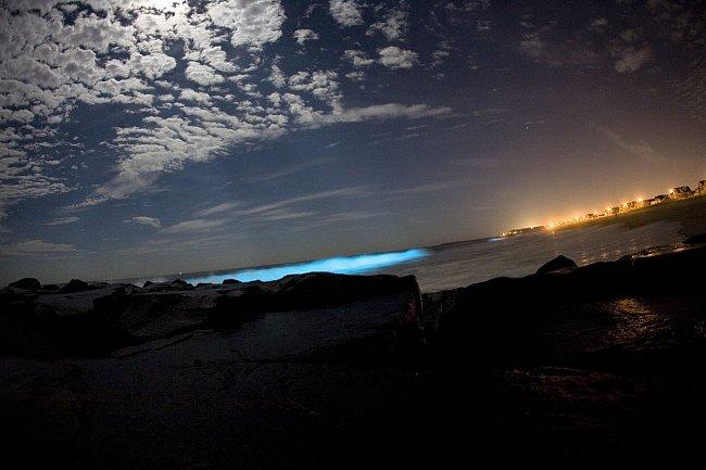 Zářící oceán způsobují obrněnky