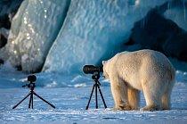 Na norských Špicberkách se role obrátily. Lední medvěd zkouší své fotografické dovednosti.