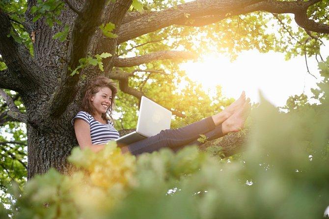 Přírodní zdroje - ekologie - třídění odpadu - životní prostředí. Jaké informace hledáme na internetu v souvislosti s pojmy, které se točí kolem přírody?