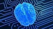 Člověk má 8 druhů inteligence. Jak jste na tom vy?