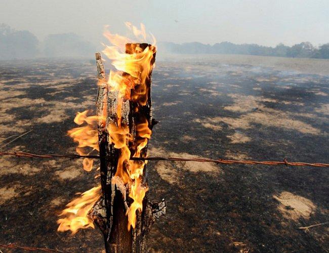 Texas. Plápolající sloupek ohrady vyznačuje rozsah lesního požáru poblíž Bastropu 5. září 2011 během období rekordního sucha a vlny veder. Požár, který zničil 1 685 domů, možná zažehly jiskry z odumře