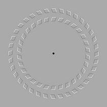 Dívejte se na bod kruhu. Pak oddalujte a přibližujte hlavu k monitoru. Kruhy se budou otáčet.