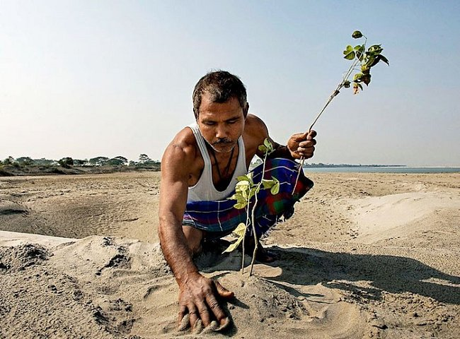 Před 39 lety Jadav zasadil první strom...