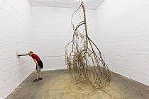 """Umělecká sbírka Christiana aKaren Borosových umístěná vnacistickém bunkru využívá berlínskou posedlost vztahem mezi minulostí apřítomností. V""""Lese"""" Michaela Sailstorfera visí stromy vzhůru kořeny aotáčejí se."""