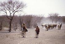 Dešťové období má sice trvat tři měsíce, ale často tomu tak není, zvláště v západní části – Dárfúru.