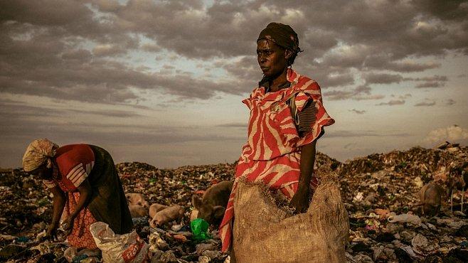 National Geographic Photo Contest 2012: Fotogalerie nejlepších snímků roku
