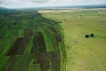 Hranice národního parku Queen Elizabeth je jasně viditelná při pohledu z vrtulníku.FOTO: Joel Sartore