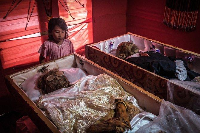 Domorodci z kmene Toraja, který obývá indonéský ostrov Sulawesi, věří v posmrtný život a dodržují pro ostatní smrtelníky jeden velmi zvláštní rituál.