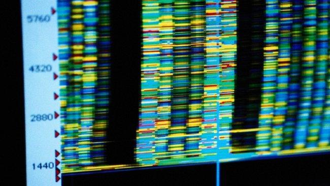 Evropa prodělala před 4500 lety překvapivou genetickou revoluci