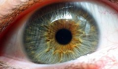 Patříte k lidem, kteří vidí o miliony barev víc než ostatní?