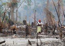 Žena nesoucí cukrovou třtinu kráčí po stezce, která vede přes nedávno vypálené políčko a spojuje tržiště s táborem nelegálních osadníků v ugandské lesní rezervaci Kagombe. Na území rezervace žijí tři