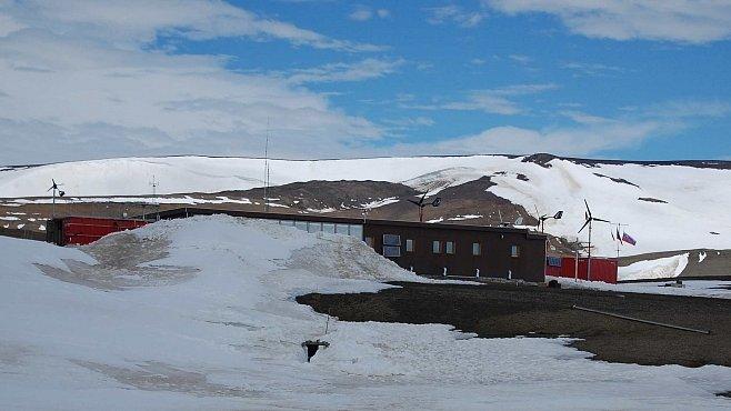 Extrémní zima v Antarktidě. Zaskočila nejen české vědce na Mendelově stanici, ale i tuleně a tučňáky
