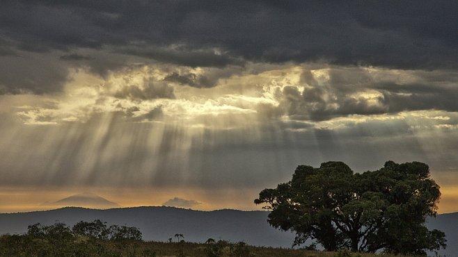Nejlepší fotografie Afriky. Objektivem expedice National Geographic