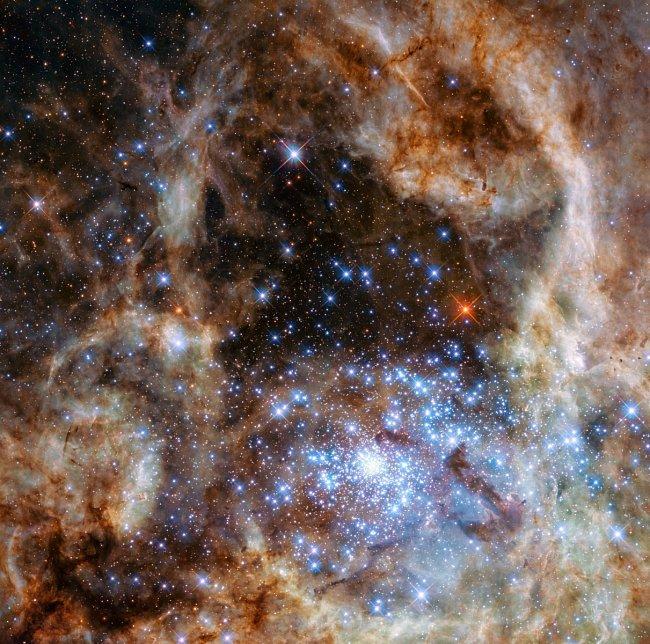 Fotografie ukazuje centrální oblast mlhoviny Tarantula ve Velkém Magellanově mračnu. Mladá a hustá hvězdokupa R136 je vidět v pravém dolním rohu. Obsahuje stovky mladých modrých hvězd, mezi nimi i ty největší, které se doposud podařilo ve vesmíru odhalit.