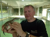 Ředitel Miroslav Procházka s vylíhnutým gaviálem indickým.