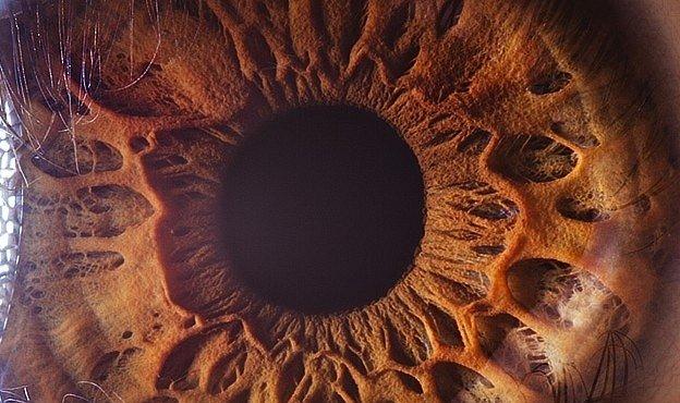 Makrofotografie lidských očí: jsou skutečnou bránou do duše