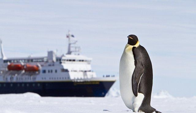 Češi v Antarktidě postavili skleníky. Předpovídají, že teplota se tam zvýší o 1,5 stupně