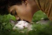 Zatímco dospělé kočky prošly testem jednou, koťata dvakrát – krátce po narození a znovu o dva měsíce později.