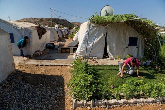 Mohammad Magelk pečuje o oázu, kterou vytvořil vprašném táboře Nizip 1, kde nyní žije více než 11000 Syřanů. Žije zde dva roky a během té doby potkal ženu, sníž se oženil a založil rodinu.