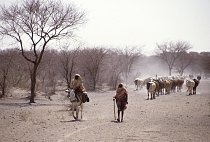 Lidé se musejí naučit se suchem žít.