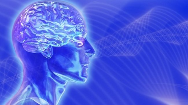 Čipová budoucnost je tady: vědci vylepšili opicím mozek implantátem