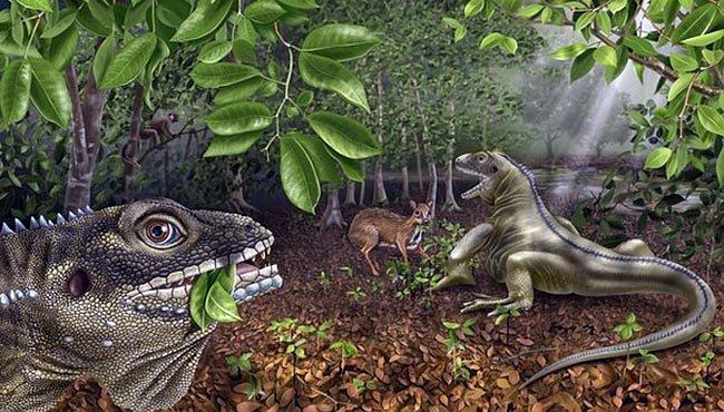 Ještěrčí král z The Doors se dočkal vlastní fosilie