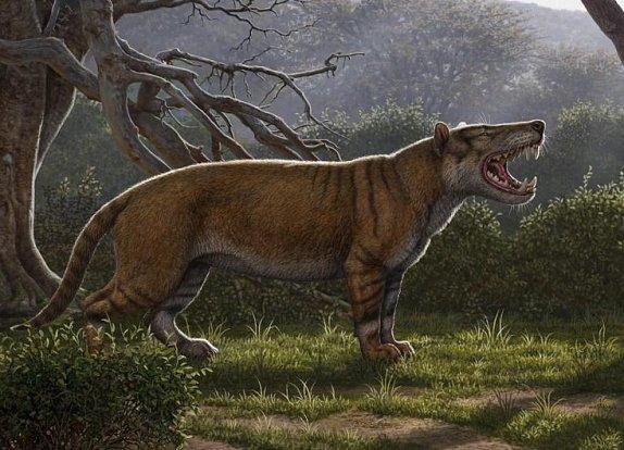 Tento nově popsaný druh pravěkého masožravce byl větší než medvěd lední