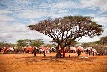 Lidé v táboře pro vysídlené osoby v Guri El v Somálsku, říjen 2011. (foto © Peter Casaer/MSF)