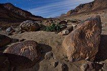 Stylizované rytiny velbloudů, jednoho i s jezdcem (vlevo), patří mezi tisíce petroglyfů a nápisů, které po sobě zanechali cestovatelé během nejméně 2 500 let ve Wádí Hafíru, úzkém kaňonu posetém balvany na jihu Jordánska.