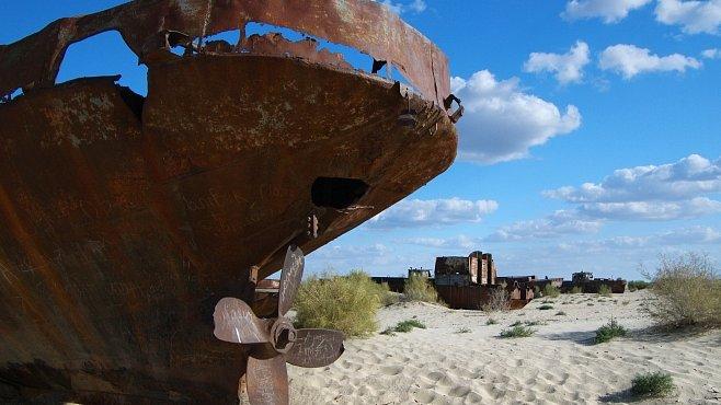 Uzbecká bavlna dala práci a zničila zdraví. A s ním i přírodu