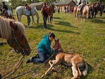 Oglalové odpradávna chovají koně v hluboké úctě - říkají mu sunka wakan neboli posvátný pes.