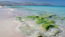 Sokotránské ostrovy bývají nazývány Galapágami Indického oceánu.