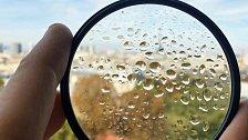 Ať už skrze dešťové kapky nebo orosený filr, kvůli focení na makroobjektiv bez zaostřovacího kroužku se musel Bertrand Kulik na každý snímek plně soustředit a ani se nepohnout...