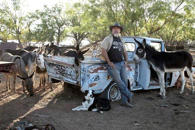 Sucho spálilo i pastviny, což přinutilo některé rančery, aby přemístili zvířata na zelenější pastviny dál na severu.