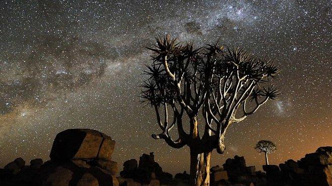 Časosběrné VIDEO: Noční obloha v Namibii vám vyrazí dech. Něco tak krásného jste dlouho neviděli
