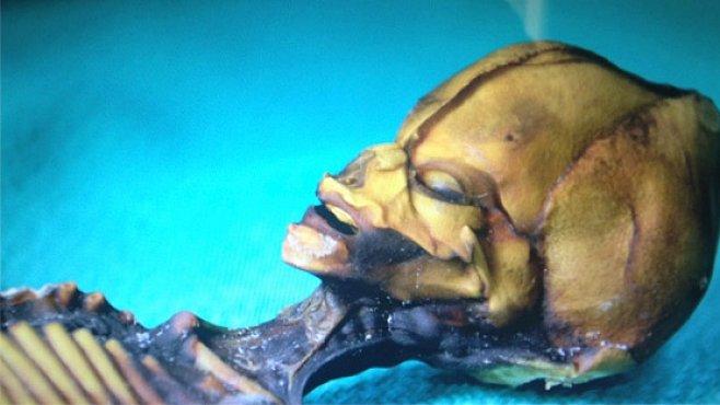 Mumie údajného mimozemšťana má vydat tajemství