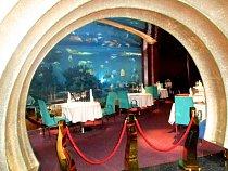 Ve třech akváriích uvidíte až 450 mořských živočichů, včetně klaunů, žraloků, mořských úhořů či murén.