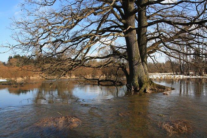 Rozvodněná řeka pomáhá prosperitě přírody.