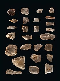 Kamenné nástroje objevené na tábořišti zdoby před 15500 lety ve střední části dnešního Texasu přinesly rozhodující důkaz, že první Američané přišli nejméně o 2500 let dříve, než se dříve myslelo. Rohovec byl důležitou horninou pro výrobu nástrojů.