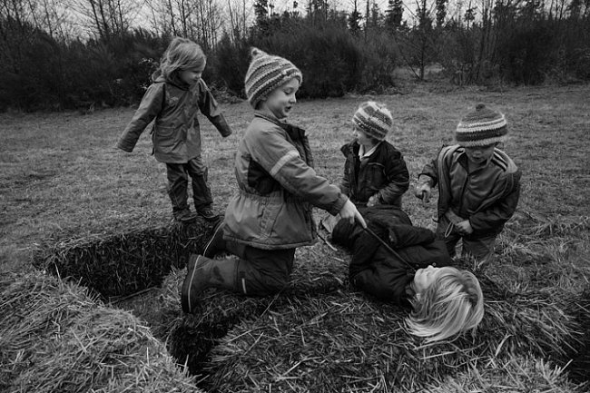 VeWaldorfské škole naWhidbeyho ostrově severně odSeattlu si děti zadohledu učitele hrají nabalících slámy. Škola se řídí filozofií, podle níž má volná hra zásadní význam pro tělesný, kognitivní, jazykový asociální vývoj malých dětí.