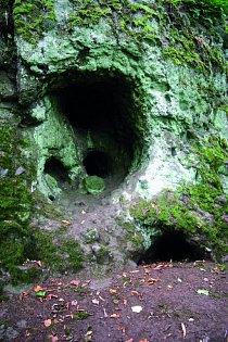 . Jak se masa bahna a kame- ní, kterou takový lahar je, řítila po svahu vulkanického masivu do údolí, strhávala  s sebou stromy, jež rostly na svazích sopečného pohoří. Nevhodné podmínky  ovšem nep