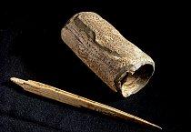Drtidlo nalezené v jeskyni Kůlna.