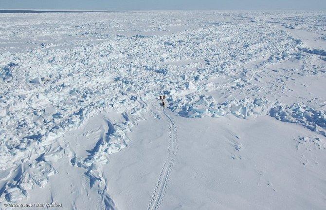 Průzkumníci Greenpeace, Lonnie Dupre a Eric Larsen, sledovali vArktidě tloušťku ledu.