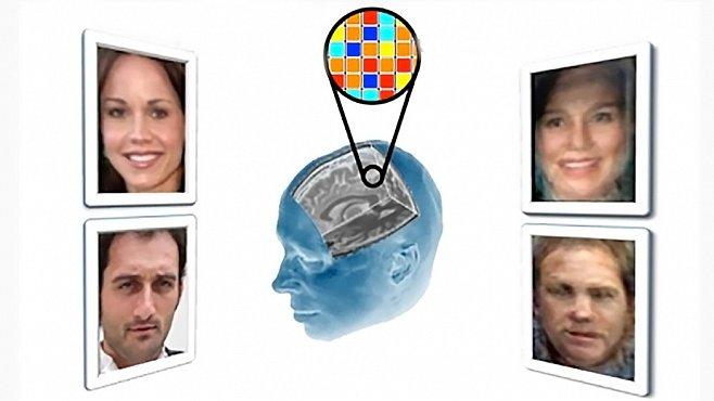 Skenování mozku odhalilo tváře lidí, které testovaný viděl