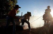 Na ranči v Dixie Valley v Nevadě značkují dobytek. Chov dobytka je hlavní hospodářskou činností v okolí Route 50 a kovbojové pracují od svítání do setmění.