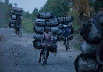 Poptávka po dřevěném uhlí stále roste. Stromy pokácené v pralesích se spálí na dřevěné uhlí, které pak muži převezou na bicyklech do měst. FOTO: Pascal Maitre