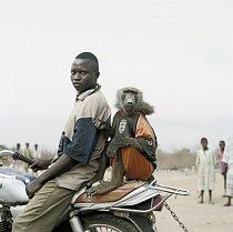 Motorkář s Amiloo, Nigérie 2005.