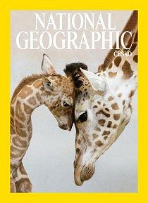 2. místo / Žirafí láska