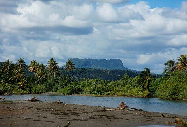 Pohled horu El Yunque od řeky Miel.
