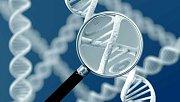 Uvnitř lidské DNA se skrývá druhý, dosud utajený kód života